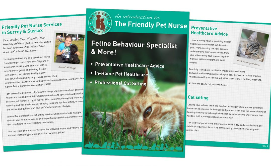 An introduction to the friendly pet nurse digital magazine image