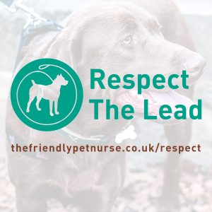 Respect The Lead Logo - Square