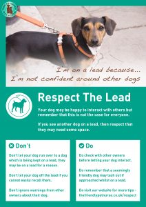 Respect The Lead Poster - I'm Not Confident Around Other Dogs