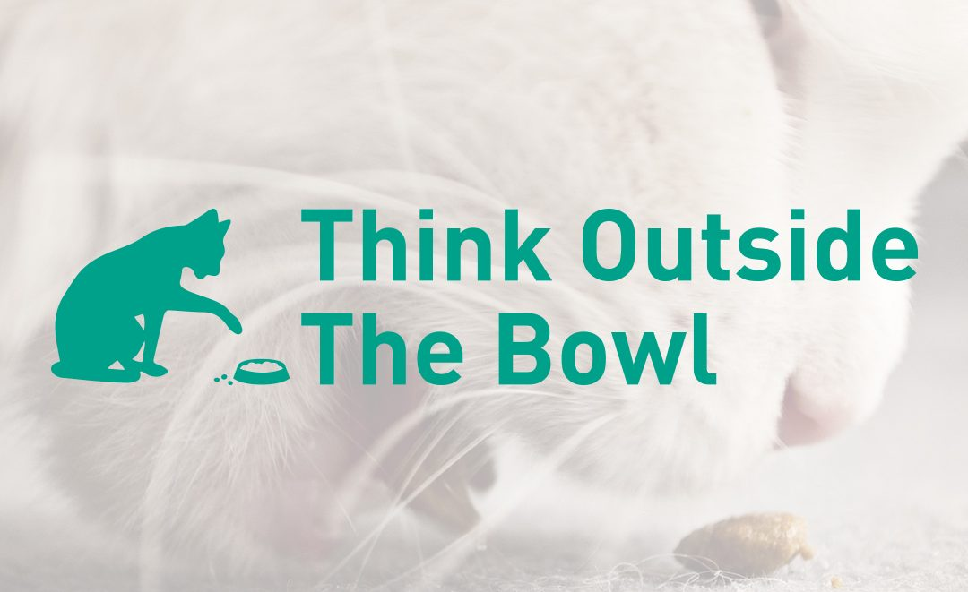 Puzzle Feeding Cats - Think Outside The Bowl Campaign - Portfolio Image